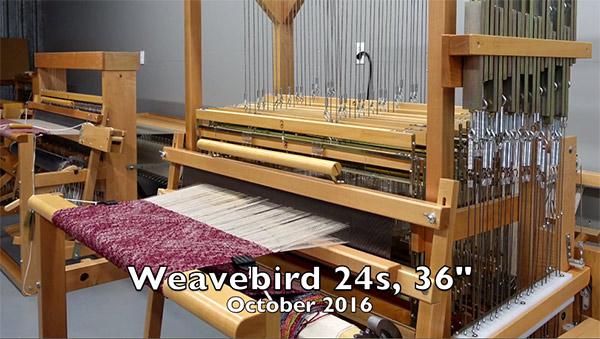 Weavebird